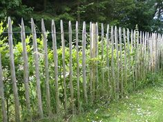 staket kastanj - Sök på Google Front Fence, Fence Gate, Fences, Farm Gardens, Outdoor Gardens, Seaside Garden, Garden Fencing, Get Outside, Backyard Landscaping