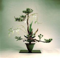 Schools of Ikebana Ikebana Arrangements, Arrangement Floral Ikebana, Beautiful Flower Arrangements, Floral Arrangements, Beautiful Flowers, Japanese Flowers, Japanese Art, Exotic Flowers, Purple Flowers