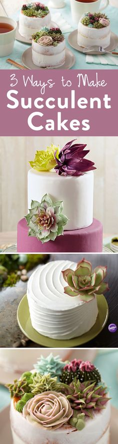 Here are three different ways to make succulent cakes through three different mediums: gum paste, fondant and buttercream. Fancy Cakes, Mini Cakes, Pretty Cakes, Beautiful Cakes, Fondant Cakes, Cupcake Cakes, Bolo Floral, Making Fondant, Cactus Cake
