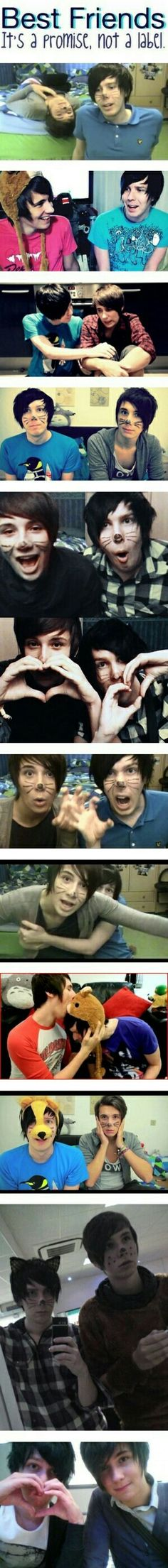 Best friends: Its a promise, not a label, Dan, Phil, text, timeline; Dan and Phil
