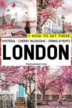 Spring in London: what should you wear? And where do you have to go to find the best wisteria and cherry blossoms in London? This useful guide will tell you everything, with updated info on all the spring events and how to get there! Europe Travel Tips, European Travel, Travel Guide, Travel Destinations, London England, Oxford England, Cornwall England, Places In Europe, Things To Do In London