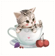 Cat in teacup