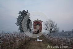 Little church in winter in a wineyard