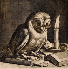 "James Collins, ""Owl wearing reading spectacles by candlelight"", England, 1685"