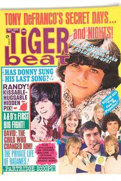 Tiger Beat, Oct. 1973 - Tony DeFranco, Donny Osmond, David Cassidy, Randy Mantooth, Williams twins, Bradys
