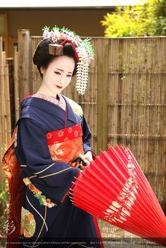 野外撮影 #maiko #kyoto