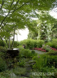 This dense shade garden is accented by a Spanish stone fountain, while wax begonias add a pop of color. Keep heights of flowers and shrubs in mind when planting along a path, so that it doesn't become too overgrown