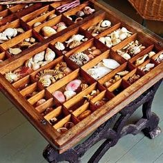 It is made from an iron sewing machine base that is topped with an old printer's typecase drawer, then filled with various seashells.