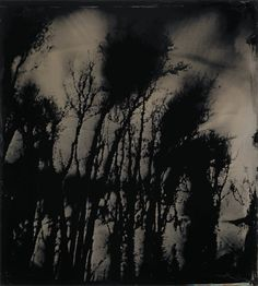 Sally Mann's haunting photographs exhibited at The National Gallery of Art