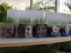 Grass heads with children's photos, have them make a face on the cup