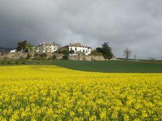 primavera en Casa Rural Loretxea