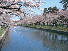 鶴岡公園(山形県鶴岡市)