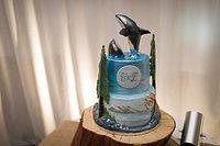 This cake by www.coastalcakecompany.com is amazing!  Orca Wedding Cake   Greg Howard Photography www.greghoward.ca