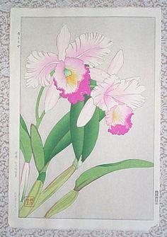 Kawarazaki Shodo: Orchid - Katoriya