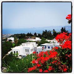#zia #kos #kosisland #greece Kos, Karpathos, Archaeological Finds, Greece Islands, Crystal Clear Water, Pebble Beach, 3 In One, Wedding Venues, Greek