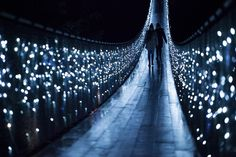 Things to do in Vancouver – Canyon Lights | Capilano Suspension Bridge Park