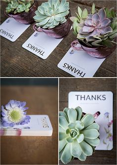 succulent thank you ideas @weddingchicks