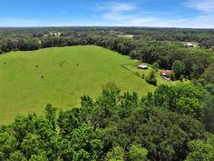 BACK 40 FARM!!  40 BEAUTIFUL ACRES IN THE HEART OF OCALA/MARION COUNTRY HORSE COUNTRY! LESS THAN 10 MINUTES TO I75 & NEW WORLD EQUESTRIAN CENTER!