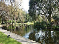 St Stephen's Green, Dublin Dublin, Saint Stephen, Sidewalk, Green, Travel, Brazil, Places To Visit, Walkway, Pavement