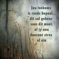 Afrikaanse Quotes, In God We Trust, Wisdom Quotes, Inspirational Quotes, Sayings, Cover, Books, Tart, D1