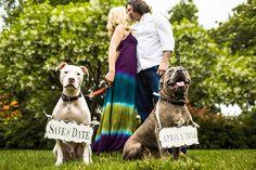 Philadelphia Wedding Photographers | Modern Weddings and Portraits by Tony Hoffer, Cute saved the date idea