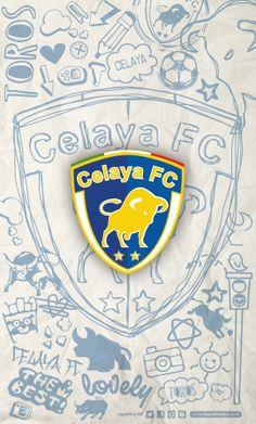 CelayaFC • • LigraficaMX 291213CTG(3)