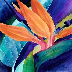 Bird of Paradise ( Strelitzia) by artbyrachel Exotic Flowers, Tropical Flowers, Watercolor Flowers, Watercolor Paintings, Paradise Painting, Birds Of Paradise Flower, Guache, Tropical Art, Watercolor Portraits
