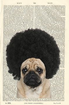 Afro Pug Geek Dictionary Illustration by PigAndGinStudios on Etsy, $10.00