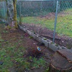 7 Blindsiding Useful Tips: Backyard Fence Farm aluminum fence with brick columns.Spruce Up Chain Link Fence aluminum fence puppys. Wooden Fence Gate, Brick Fence, Front Yard Fence, Bamboo Fence, Fence Stain, Concrete Fence, Cedar Fence, Fence Landscaping, Backyard Fences