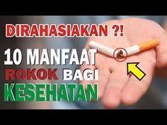 Rahasia !! 10 Manfaat Rokok yang Disembunyikan Para Ilmuwan & Pemerintah bagi Kesehatan - YouTube