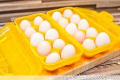 Von Hühnern und Gärten… | lecker macht laune