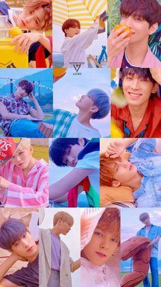 Fondo de Seventeen ♡ Seventeen Album, Dino Seventeen, Carat Seventeen, Seventeen Wonwoo, Mingyu, Seungkwan, Seventeen Members Names, K Pop, Mamamoo