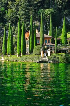Green trees and reflections in Lake Como Italy