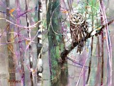 Painting this Barred Owl got me thinking about wisdom. What is it... and do I have any? Can it help me make my best work? I found a nursery rhyme; A wise o