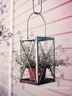 Great idea for the lantern with the broken glass: potted plant in a hanging lantern