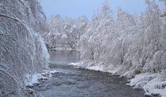 White Christmas  |  Photo: Leena Rissanen, Valtimo. Christmas Photos, White Christmas, Winter Beauty, Finland, Winter Wonderland, Serenity, Hiking, Nice, Travel