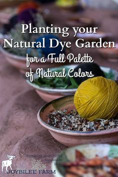 A natural dye garden will give you eco-friendly, natural dye pigments for textiles, knitting yarns, soap making, and more. Natural Dye Fabric, Natural Dyeing, Shibori, Textiles, How To Dye Fabric, Dyeing Fabric, Dyeing Yarn, Textile Dyeing, Ice Dyeing