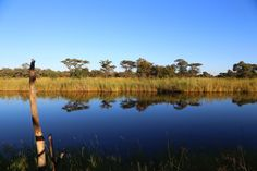 Namibia, durch die Zambesi Region, ehemalige Caprivi Region, Während unserer Fahrt duch dei Zambesi Region, ehemals Caprivi Streifen, haben wir der N'Kwazi Lodge und im Kwando Camp übernachtet.