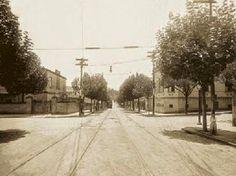 Alameda Barão de Limeira Ano: 1914