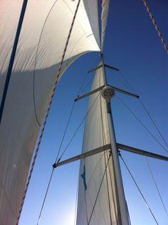 Full sails ahead...