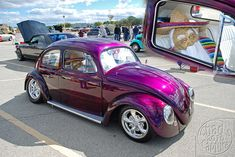 Classic VW Beetle Paint Jobs   VW Bug   @Dan Uyemura Uyemura Uyemura Uyemura Uyemura Plumpton #purple ;p
