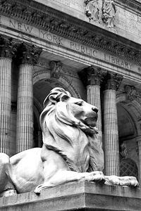 New York Public Library on Fifth Avenue: Did you know that the marble lions flanking the steps have names? The southern lion (to the left when facing the arches) is called Patience (shown here.) The northern lion on the right is Fortitude.