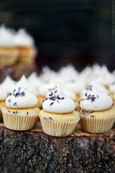 Lavender Goat Cheese Mini Cakes //