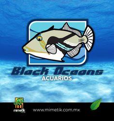 Black Oceans Acuarios