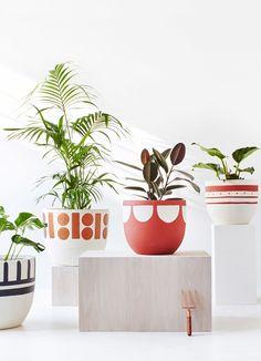 8 Great Plant Pots — The Design Files | Australia's most popular design blog.