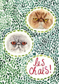 Les Chats by Evie Adams