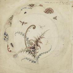 Emile GALLÉ (1846-1904) Etude pour l'assiette Fougère et insectes, réédition en 1900. Crayon et aquarelle - 26,9 x 26,7 cm.  Paris, Musée d'Orsay. Photo: RMN.  (hva)