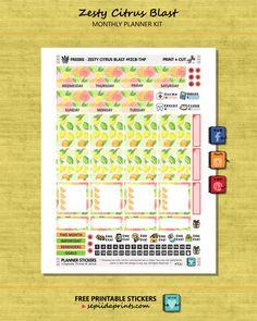 Free Printable Zesty Citrus Blast Planner Stickers from Sepiida Prints