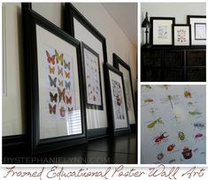 framed nature art prints from the National Assoc. of State Foresters, $21 for multiple copies of all these and more!  {give extras away to friends or your local school}