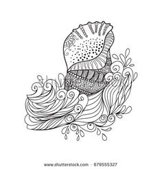 Seashell with high details. Adult antistress coloring page. Black white hand drawn zendoodle oceanic object. Sketch for tattoo, poster, print, t-shirt in zentangle style. Vector illustration.